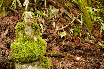 Mossy bodhisattva statue