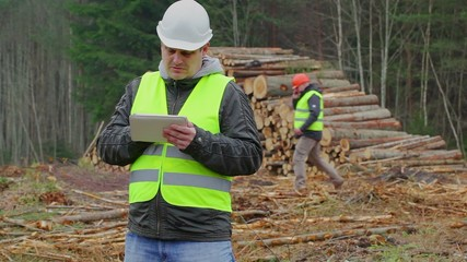 Forest Officer working with tablet PC in forest