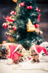 Small toy bears holding Merry Christmas sign