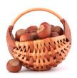 Hazelnuts in wicker basket