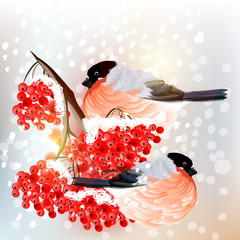 Christmas background with snow, bird and rowan in retro style