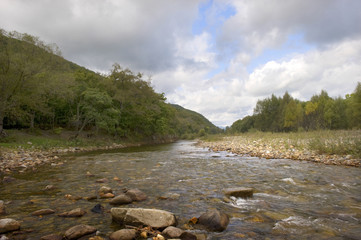 Taiga  river