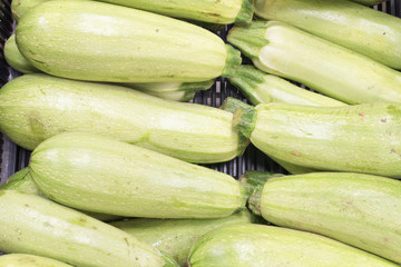 vegetable marrows in a crate