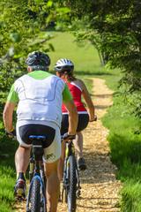 Mountainbiken im Grünen