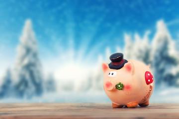 Glücksschwein im Winter