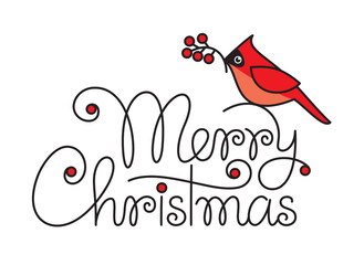 Merry christmas hand lettering with red robin bird and branch