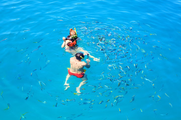 tourist snorkeling in clear blue sea water and feeding to tropic