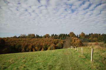 Schäfchenwolken über Herbstlandschaft