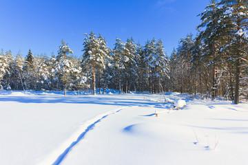 Total Russian Winter