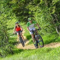 Zwei Mountainbiker im Grünen