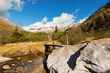 Wooden Bridge - Adamello Trento Italy
