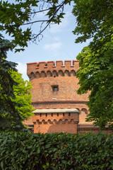 Форт Дона в городе Кёнигсберге.