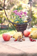 Autumn harvest on table