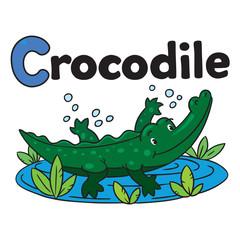 Little crocodile or alligator. Alphabet C