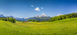 Idyllic summer landscape in the Alps