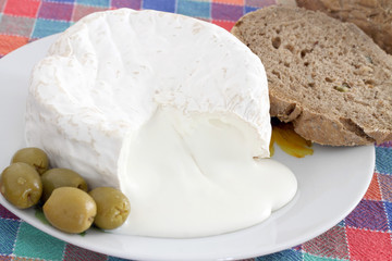Fresh cheese made with buffalo milk