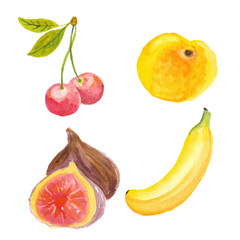 Cherries, apricot, figs and banana. Hand drawn