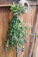Freshly harvested thyme hanging and drying