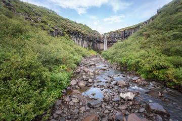 Svartifoss, landscape in Iceland