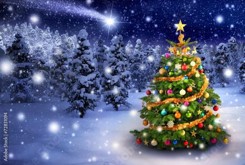 Leinwanddruck Bild Weihnachtsbaum in verschneiter Nacht
