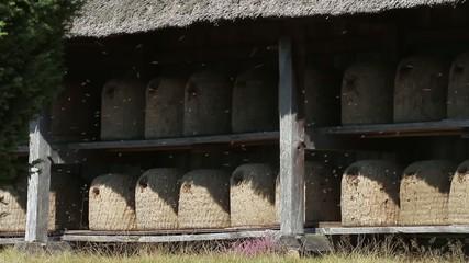 Traditionelle Bienenkörbe in der Lüneburger Heide