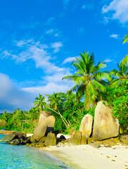 Shore Scene Stones