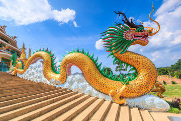 Giant chinese dragon on the roof