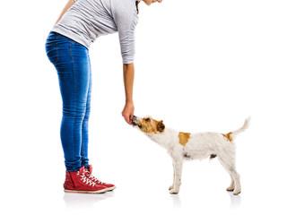 Unrecognizable woman feeding dog isolated