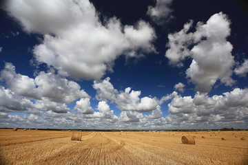 lay hay on field clouds sun