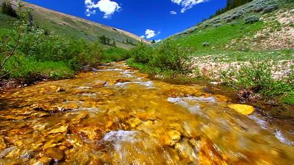 Bighorn Mountains Stream Wyoming