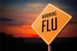 Flu on Warning Road Sign. - 72837091