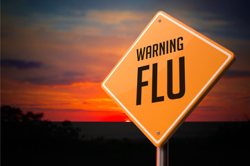 Flu on Warning Road Sign.