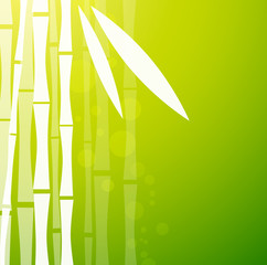 Bamboo Green Background