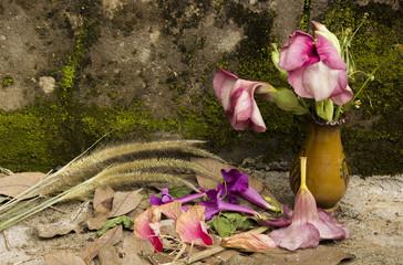 Still Life fade flower