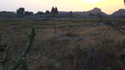 Cactus nearby Vittala Temple during sunset in Hampi in India