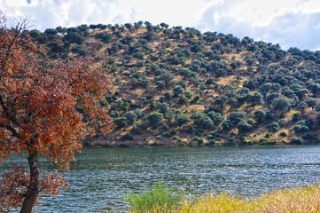 Paisaje del embalse del río Montoro, cuenca del Guadalquivir