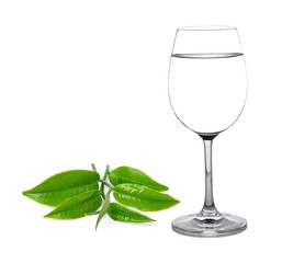 Glass of water and tea leaves isolated on white background