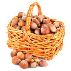 Hazelnuts in wicker basket isolated on white