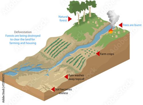 Deforestation,geological nature vector background - 72846693