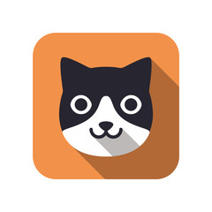 Cat, Animal face character icon design