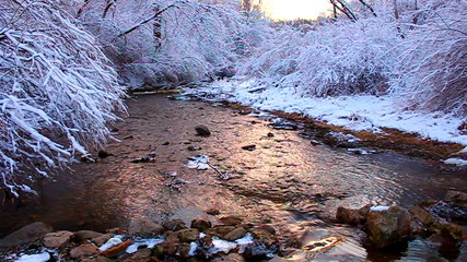 Winter Stream Scene Illinois