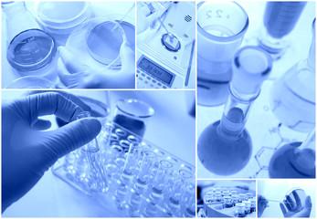 研究イメージ(化学と微生物)