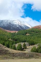 Mountain Siberian taiga