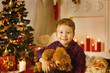 Christmas Kid Boy Portrait, Present Gift Toy, Xmas Tree in Room