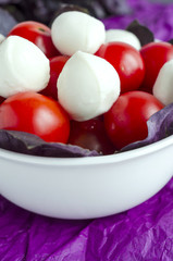 Mozzarella and cherry tomatoes in a porcelain  bowl