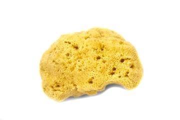 Synthetic bath sponge