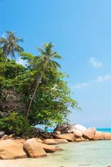 Rocky Bay Blue Seascape