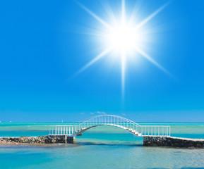Daytime Peace River Bridge