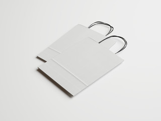 Two blank paper bags with handles