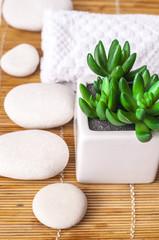 Spa Settings on beige  thin bamboo mat